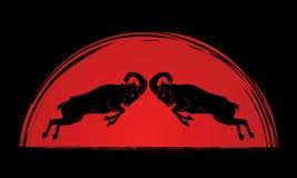 Бой Ibexes бесплатная иллюстрация