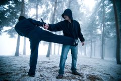 бой outdoors Стоковое Фото