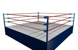 Бой wrestling Стоковые Фото