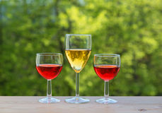 3 бокала на таблице в саде Стоковая Фотография