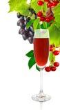 Бокал вина и виноградины на белой предпосылке Стоковые Изображения