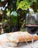 Бокал вина и зрелые виноградины в винограднике Стоковые Изображения