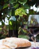 Бокал вина и зрелые виноградины в винограднике Стоковое Изображение