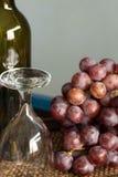 Бокал вина на подносе Стоковые Фотографии RF