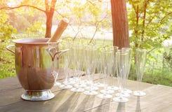 Бокалы Шампани на деревянном столе в стране Стоковое Изображение