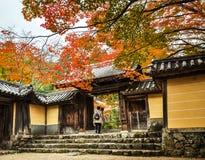 Боковой вход jingo-ji на Takao, Киото, Японии стоковые фото