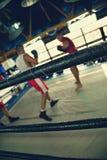 2 боксера на тренировке Стоковые Изображения RF