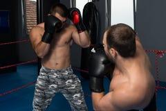 2 боксера смотря на один другого в спичке Стоковая Фотография