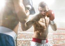 2 боксера professionl воюют на арене Стоковое Фото