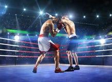 2 боксера professionl воюют на арене Стоковые Изображения RF