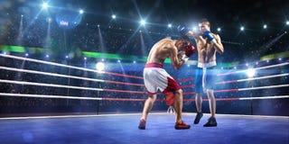 2 боксера professionl воюют на арене Стоковое Изображение