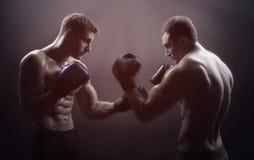 боксеров стоковое фото rf