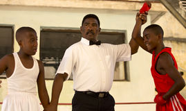 Боксеры Litlle в Гаване Стоковое фото RF
