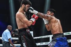 Боксеры Ramil Gadzhyiev и Bruno Sandoval воюют для названия совету бокса мира международного серебряного супер среднего веса стоковая фотография rf