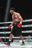 Боксеры Ramil Gadzhyiev и Bruno Sandoval воюют для названия совету бокса мира международного серебряного супер среднего веса стоковые фотографии rf