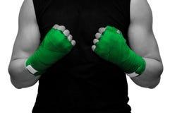 Боксер на белой предпосылке стоковое изображение