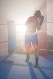 Боксер освещенный задней частью мужской пробивая в боксерском ринге Стоковое фото RF