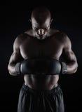 Боксер подготавливая для боя Стоковое Изображение RF