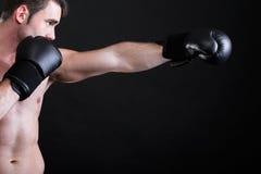Боксер спортсмена портрета в предпосылке темноты студии стоковое фото rf