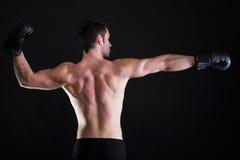 Боксер спортсмена портрета в предпосылке темноты студии стоковая фотография