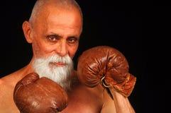 боксер старый Стоковые Фотографии RF