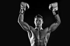 Боксер с чуть-чуть комодом Стоковая Фотография
