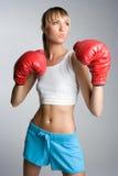боксер Стоковое Изображение RF