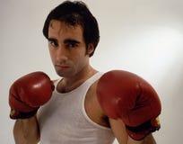 боксер Стоковое фото RF