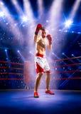 Боксер Professionl стоит на кольце Стоковые Фотографии RF