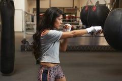 Бокс красоты Latina Стоковые Фотографии RF