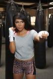 Бокс красоты Latina Стоковые Фото