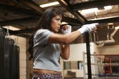 Бокс красоты Latina Стоковое Изображение RF