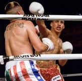 Бокс профессиональных и дилетанта Стоковые Фотографии RF
