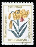 ` Болгарии защитило штемпель почтового сбора серии ` цветков, 1972 стоковое изображение rf