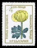` Болгарии защитило штемпель почтового сбора серии ` цветков, 1972 стоковые изображения