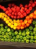 Болгарские перцы, все цвета Стоковое Изображение