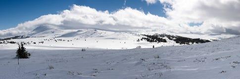 Болгарские сценарные гористые местности, национальный парк Vitosha в зиме Стоковое Изображение RF