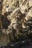 Более низкое Йеллоустон понижается скалы долины около пункта художника стоковое изображение