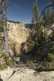 Более низкое Йеллоустон понижается скалы долины около Artist& x27; пункт s стоковое изображение