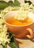 более старый чай Стоковые Фото
