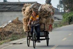 Болезненное Jia, Китай: Женщина управляя тележкой Стоковые Изображения