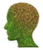 болезнь заболеванием мозга умственная Стоковая Фотография