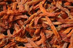 боливийский chili сухой Стоковые Фотографии RF