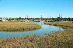 Болото и заболоченные места в Чарлстоне, Южной Каролине стоковая фотография rf