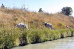 2200 больных плоских деревьев были отрезаны на банках канала du Стоковая Фотография RF
