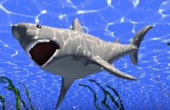 большая акула бесплатная иллюстрация