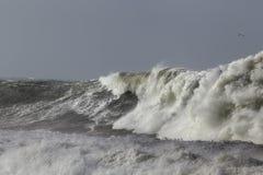 Большая бурная волна моря Стоковое фото RF