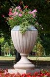 большая ваза парка Стоковые Фотографии RF