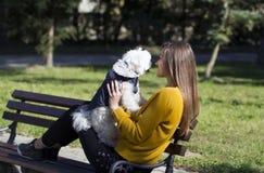 Большая влюбленность между собакой и маленькой девочкой стоковые изображения