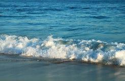 большая волна Стоковая Фотография
